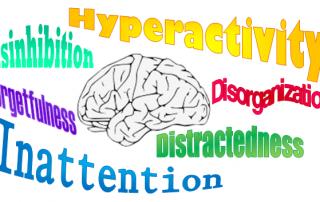 TDAH na CrianO TDAH na Criança – Sintomas e Diagnósticoça